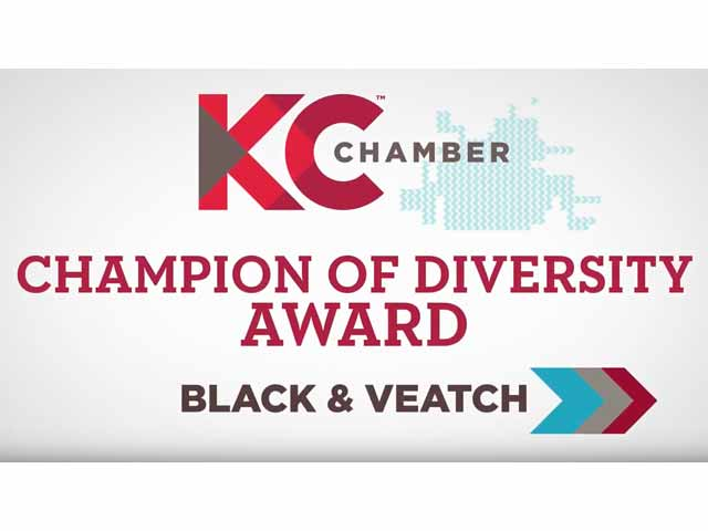 KC Chamber Champion for Diversity